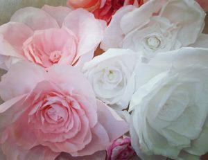 panoramica i fiori di carta crespa