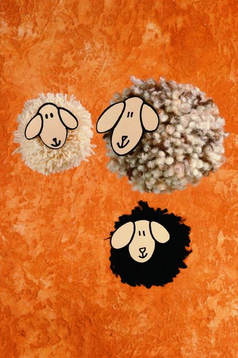 pompon pecorelle